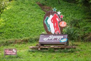 AlpagoIta2019_giov-106